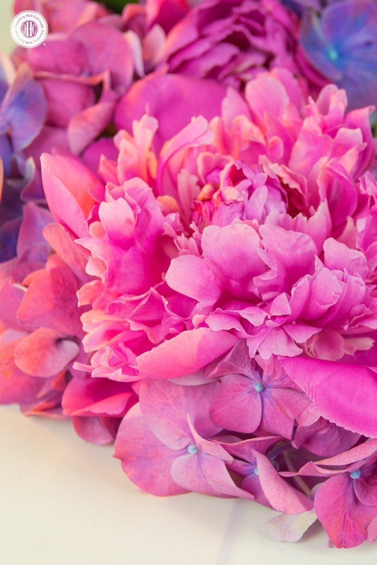 Learn how to create a beautiful peony hydrangea wreath in our easy to follow DIY! #howto #flowerarragning   countryhillcottage.com