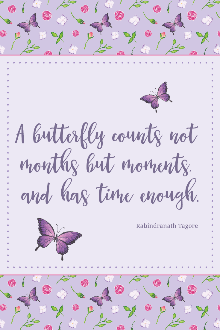 "Inspirational Quote of Day: ""A butterfly counts not months but moments and has time enough."" Rabindranath Tagore #inspirationalquote 