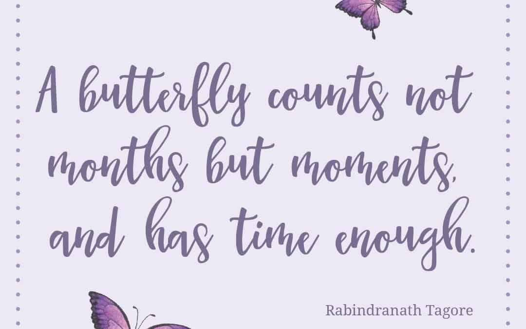 A butterfly counts not months
