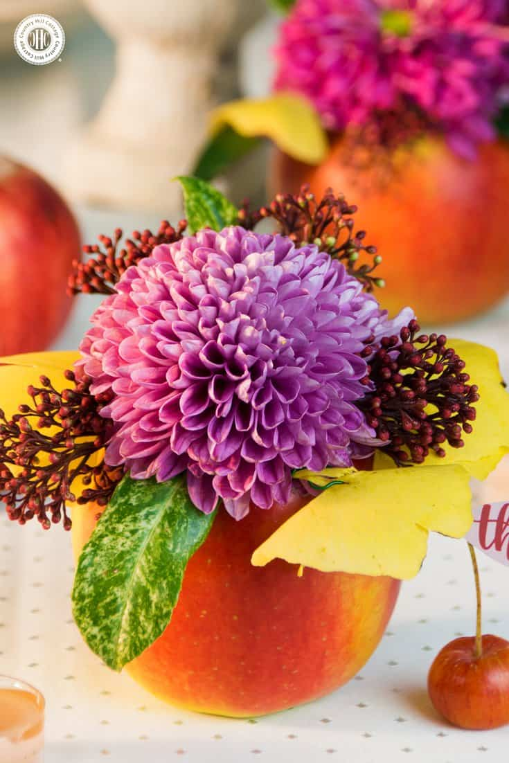 Learn to create pretty apple vases and apple candle holders in our series about autumn-inspired apple DIYs! #homedecor #flowerarranging | countryhillcottage.com