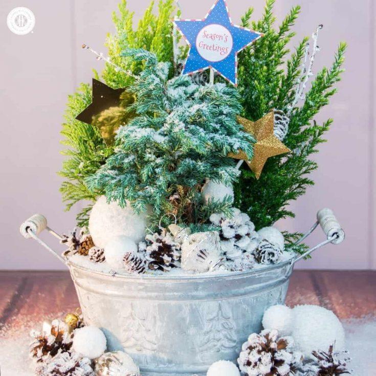 Sparkly Winter Fairy Garden Instructions