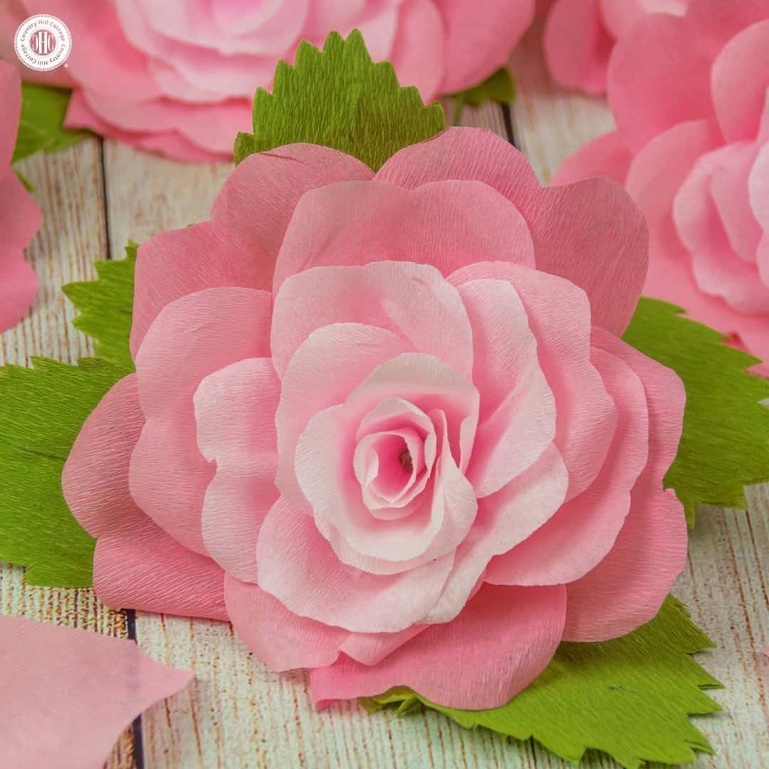 Crepe paper roses and a free printable template country hill cottage mightylinksfo