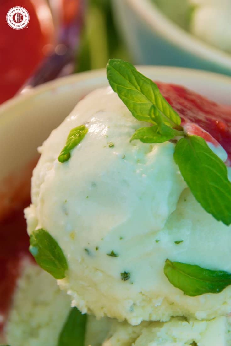 Enhance your dessert course with refreshing no-churn mint ice cream! Fresh mint leaves give this ice cream a rich minty aroma, and the best part is that you don't need an ice cream maker to prepare it. We love serving this ice cream with strawberry sauce and fresh mint leaves. #mint #nochurn #icecream | countryhillcottage.com