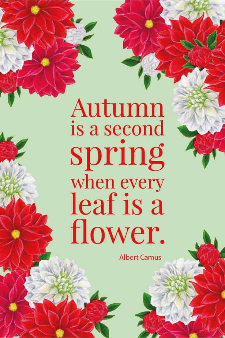 Inspirational Quote of Day: Autumn is a second spring when every leaf is a flower. - Albert Camus #inspirationalquote | countryhillcottage.com