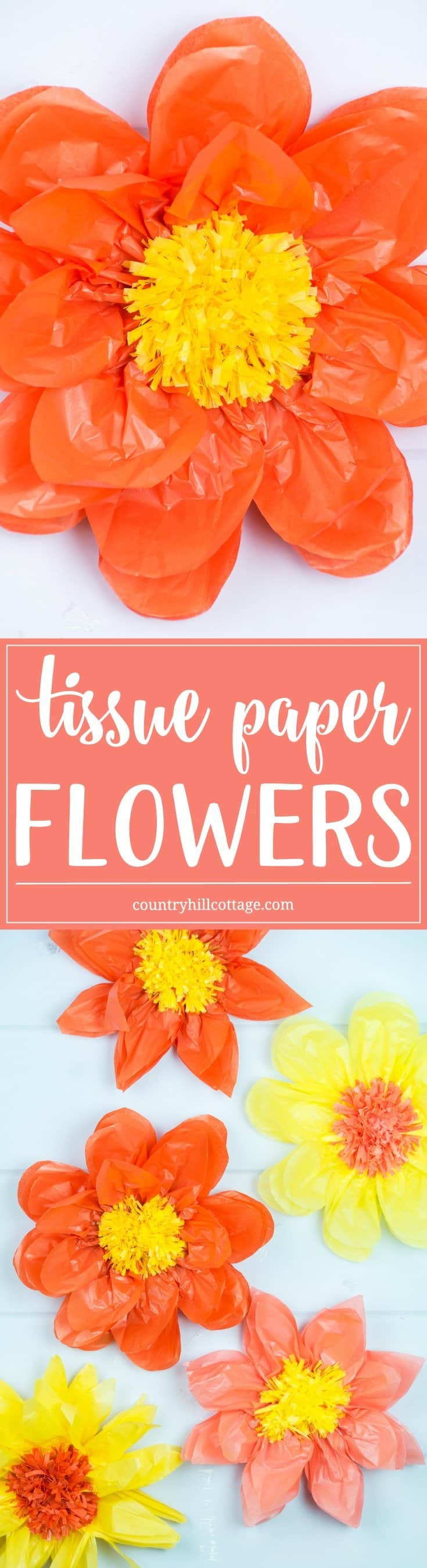 Giant Tissue Paper Flowers Easy Paper Craft Diy Country Hill Cottage