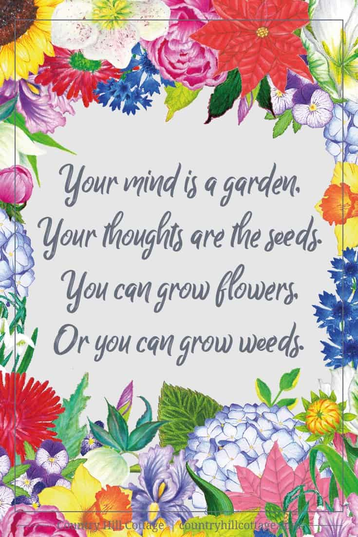 Inspirational Quote Of Day: Your Mind Is A Garden. Your Thoughts Are The  Seeds