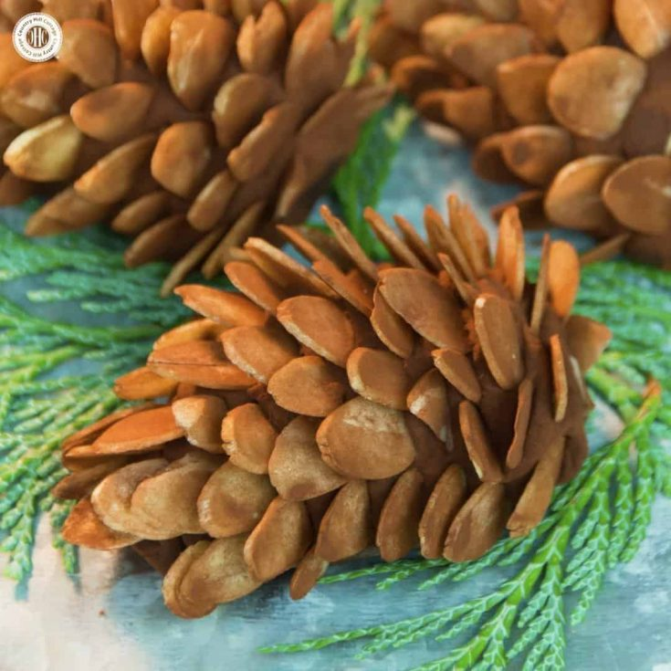 Our cute marzipan pine cone treats are a sweet homemade present and perfect for a festive party or buffet. Marzipan, cocoa, and spices make for an easy-to-do yet flavour-packed holiday nibble, while almond slices and a generous coat of cocoa create a pine cone like look. #Christmas #candy #foodgift   countryhillcottage.com