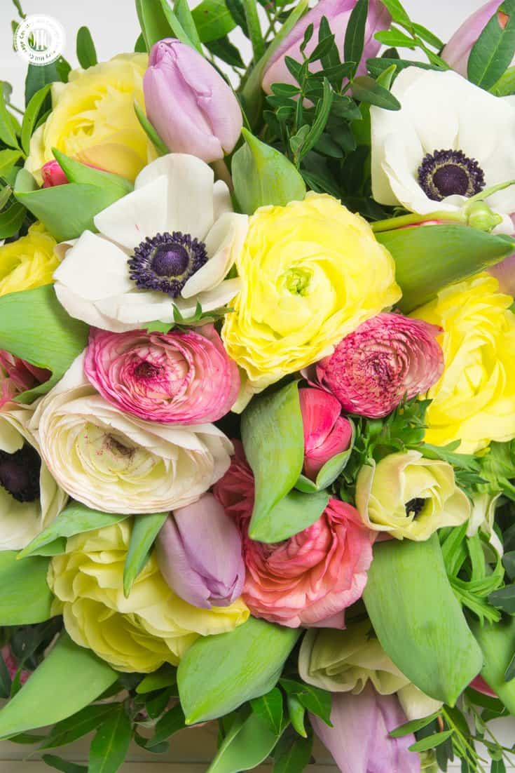 Learn to make a pretty Valentine's Day bouquet with yellow and pink ranunculus, French tulips, white anemones, and soft ruscus. The bouquet is a great accent for a party table and makes a lovely gift for your significant other or a friend. #ValentinesDay #bouquet #roses | countryhillcottage.com