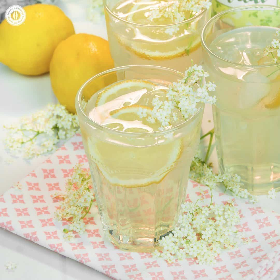If you're looking for a summer drink idea, make refreshing elderflower cordial, a wonderfully fragrant lemonade made from the flowers of the elder tree. Aside from a handful of flowers, you only need sugar, lemons, and water. You can serve the cordial undiluted, or mixed with water, soda, or Prosecco. The cordial is also a wonderful homemade food gift, and you can download pretty printable labels to decorate your bottles. #lemonade #elderflowers #cordial #foodgift | countryhillcottage.com