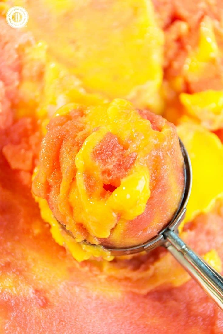 Stay cool with scoops of refreshing and healthy watermelon mango sorbet! Watermelon and mango are a wonderful flavour combination and the sorbet is super easy to prepare. This frozen treat is vegan, and you only need two ingredients to whip up a batch. No ice cream maker is required just fresh or frozen water melon and mango chunks. #mango #watermelon #sorbet #icecream | countryhillcottage.com