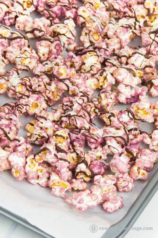 Lavender popcorn puts a floral spin on classic sweet popcorn. This sweet treat is made by coating fluffy popcorn in candy melts seasoned with lavender essential oil and a drizzle of dark and white chocolate. You can prepare the recipe with homemade or store-bought popcorn. Homemade lavender popcorn is a sweet little present for birthdays, holidays, teacher's appreciation day, Mother's Day or as a party favour. #popcorn #lavender #essentialoil #lavenderpopcorn #foodgifts | countryhillcottage.com