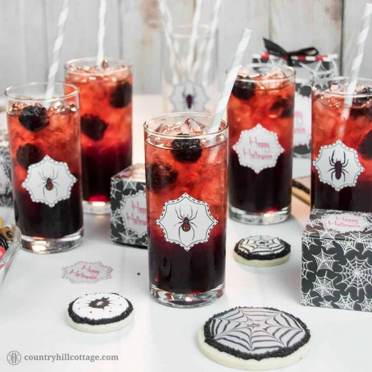 Fancy a drink? We dare you to take a sip from this Black Widow Lemonade, an icy drink made with blackberry sauce and pomegranate fruit infusion. This beautiful drink is really easy to make. Cook a delicious blackberry sauce and pomegranate fruit tea. Then layer both liquids with ample amounts of crushed ice in tall tumbler glasses, which creates a stunning ombré effect ranging from black to red. #Halloween #Halloweendrink #lemonade #blackberrylemonade   countryhillcottage.com