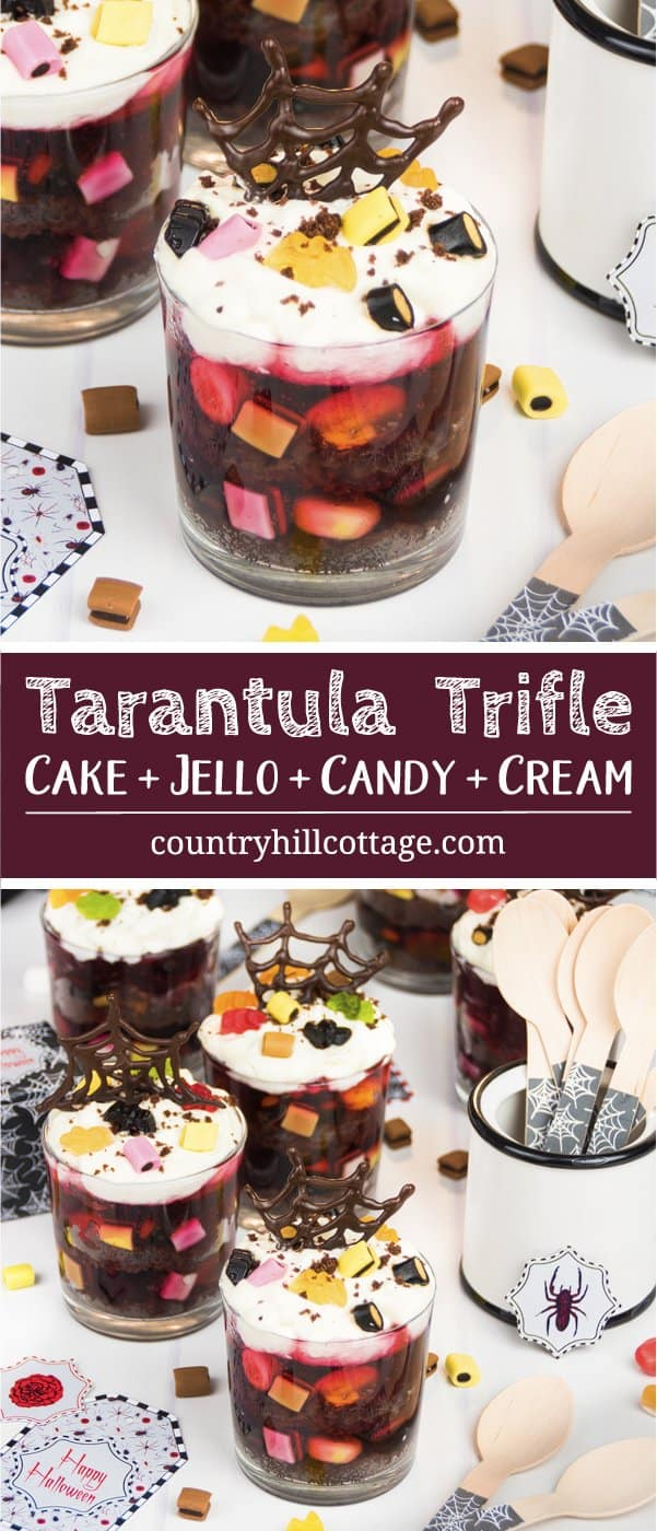 Chocolate cake, jelly, sweets, and whipped cream make for wicked layers in our second recipe, Tarantula Trifle. This quick and easy Halloween dessert include mostly store-bought goodies so that you can have the trifle on the table in almost no time. The trifle will be a sure crowd pleaser at your Halloween party. Plus, we also show how to make fun chocolate spider webs with our free printable template. #Halloween #trifle #Halloweendessert #dessert | countryhillcottage.com