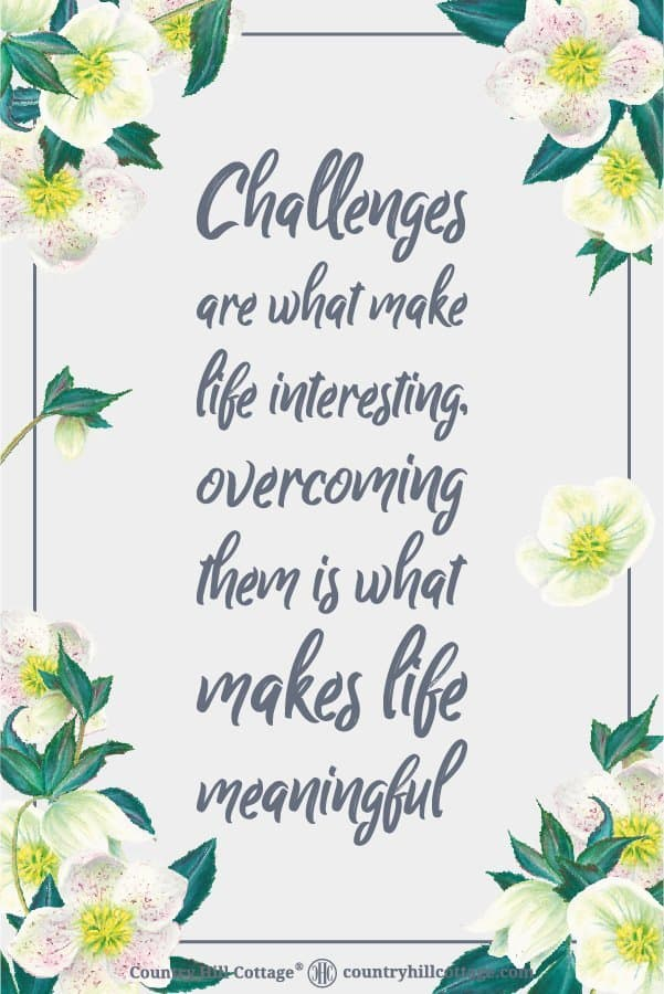 Inspirational Quote of Day: Challenges are what make life interesting, overcoming them is what makes life meaningful. Tab the image to download the printable quote and decorate your home or office. #quote #inspiration #positivity #life | countryhillcottage.com