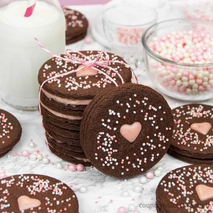Chocolate cutout cookies with ganache filling