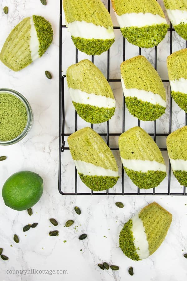 Chocolate-dipped pistachio lime matcha madeleines. Velvety and fluffy, these homemade madeleines are flavoured with matcha powder, pistachios, lime, and a touch of honey, and generously dipped in white chocolate. These make an excellent food gift and are perfect for tea time and so many other occasions. The recipe isn't difficult at all, and every last crumb is of these madeleines is melt-in-your-mouth deliciousness. #matcha #madeleines #matchamadeleines #foodgifts   countryhillcottage.com
