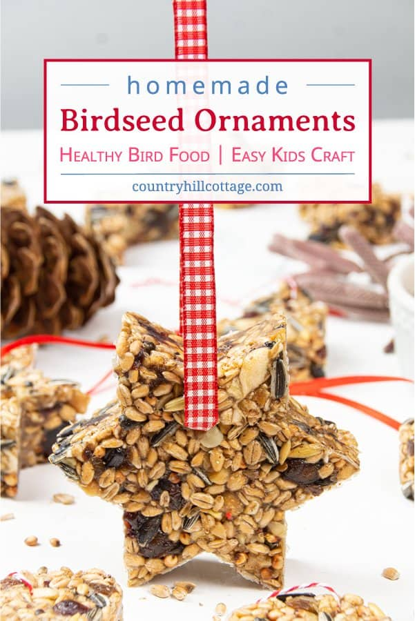 See how to make birdseed ornaments suitable for warm weather! DIY bird feeder ornaments are an easy craft idea for fall, winter, holiday season, Valentine's and Mother's Day. Homemade bird treats to feed garden birds in winter. This healthy bird food recipe is a great kid crafts idea and kids activity for school and kindergarten. Add a ribbon and gift tag and you have lovely handmade Christmas gift or wedding favour. No corn syrup #birdseedornament #birdfood #birdtreats | countryhillcottage.com