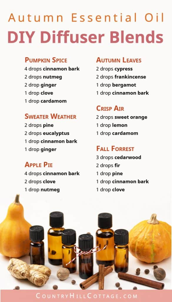 Essential Oil Blends For Fall 6 Diy Autumn Diffuser Blend Recipes
