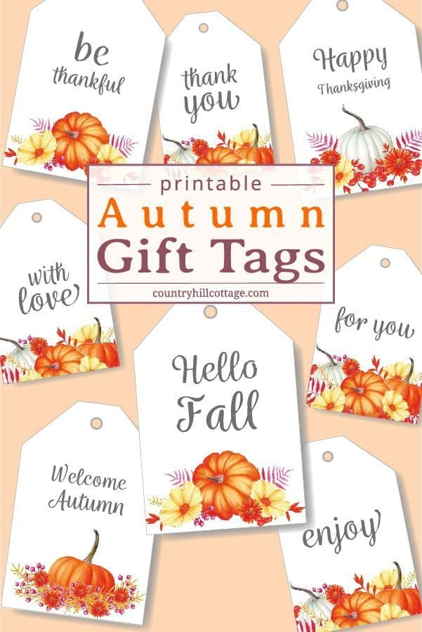 picture relating to Thank You Gift Tags Printable called Printable Drop Reward Tags - Down load Absolutely free Autumn Reward Choose
