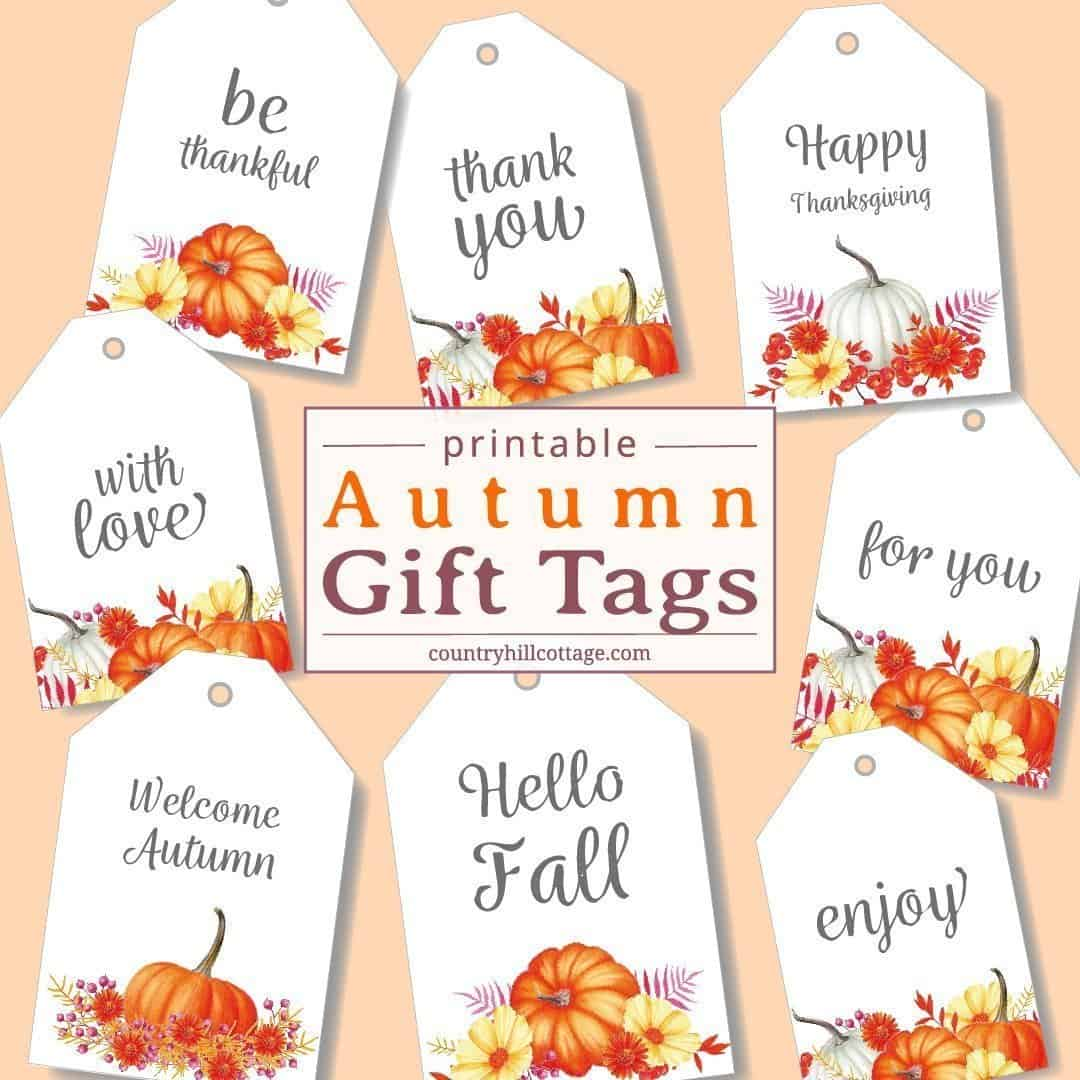 photo regarding Free Printable Gift Tags named Printable Drop Present Tags - Obtain No cost Autumn Reward Desire
