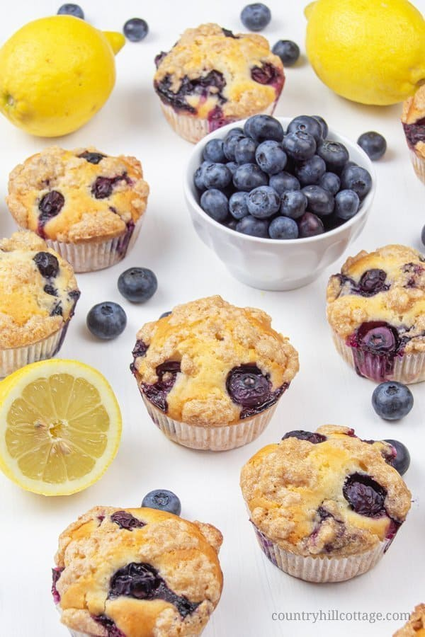 This vegan gluten-free, no sugar healthy lemon blueberry muffins recipe is so easy & quick. The moist simple homemade eggless bakery style muffins with streusel topping are made with oil and applesauce contain no wheat, no milk, no butter, and no egg. They're nut-free, allergy-friendly & relatively low carb. The muffins are great in the mornings, and a yum treat for toddlers and kids, and perfect for clean eating. Can be frozen easily as make-ahead breakfast. #muffins | countryhillcottage.com