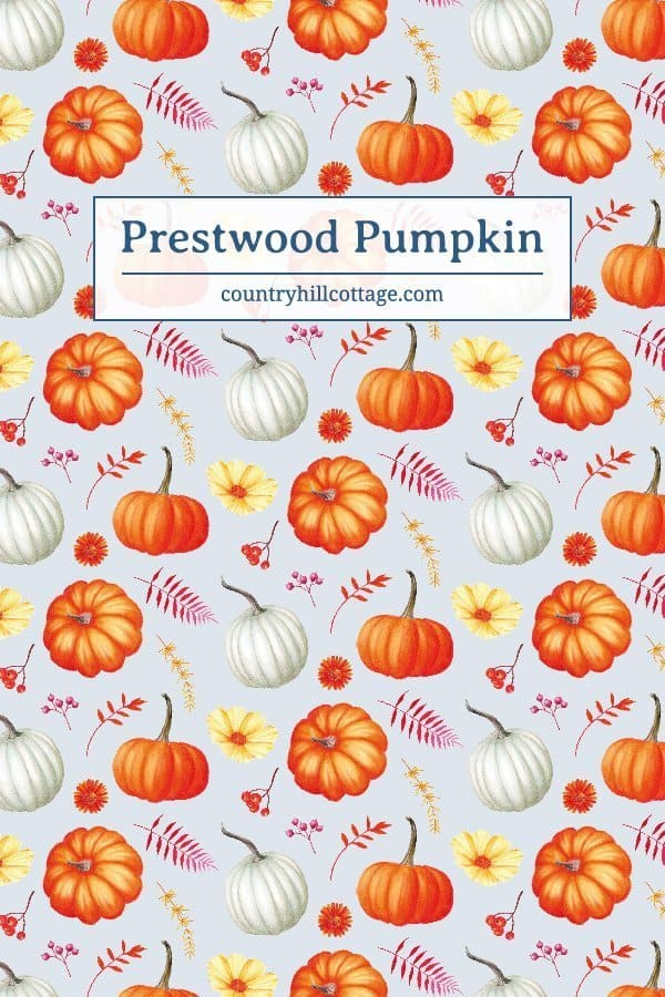 Our Prestwood pattern is a pretty autumn print with pumpkins, flowers and fall leaves that was inspired by a sunny September visit to a pumpkin patch. A beautiful Cinderella pumpkin, a quintessential fall motive, became the central part of the design, accompanied by a classic orange pumpkin and a pretty white pumpkin. Yellow cosmos, asters, stylized leaves and berries finesse the fall pattern. #floralpattern #surfacepattern #printdesign #Britishdesign | countryhillcottage.com