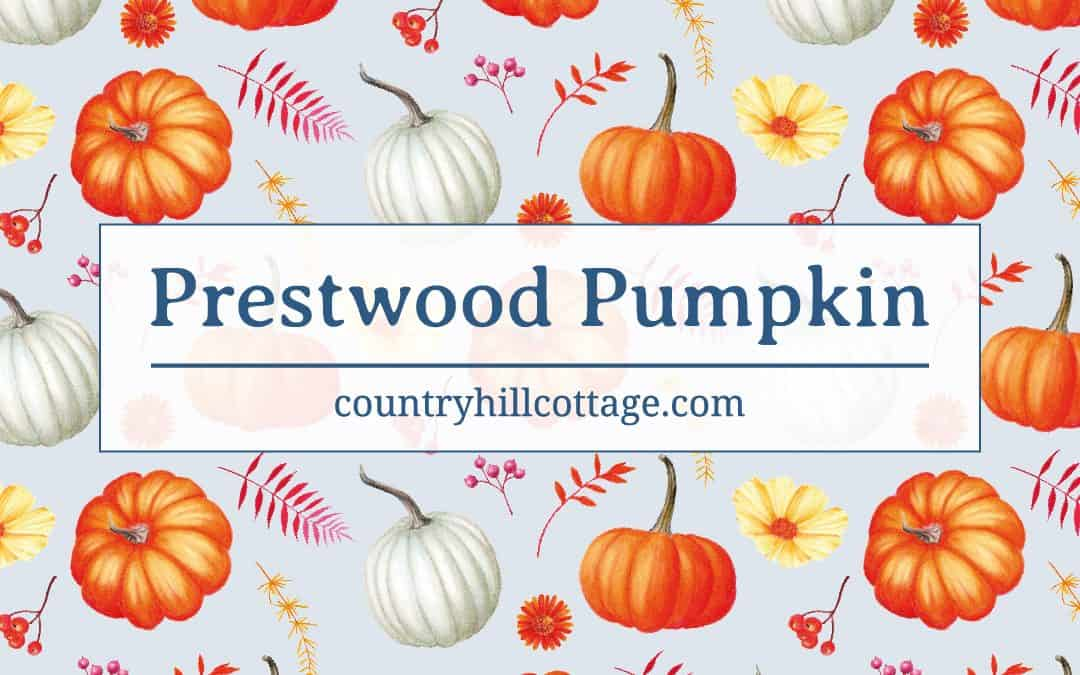 Introducing: Prestwood Pumpkin