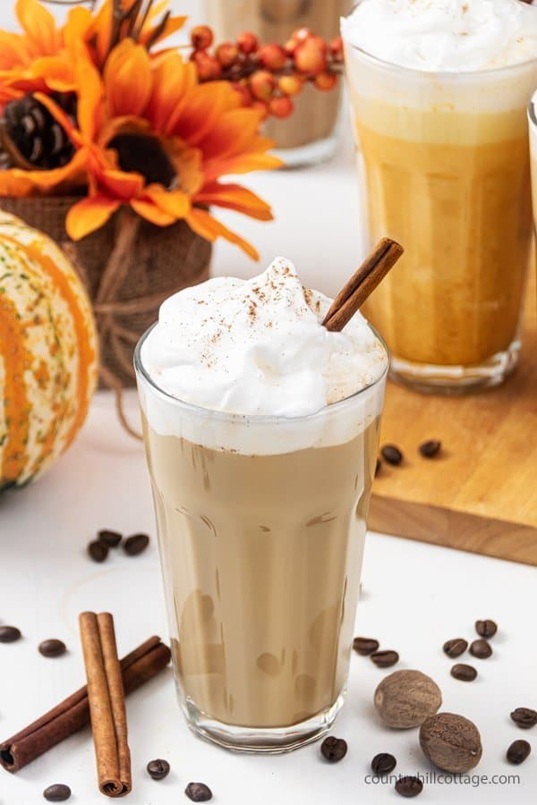 No puree pumpkin spice latte recipe is creamy and oh-so-delicious! Learn how to make easy pumpkin spice latte without pumpkin puree. This DIY healthy skinny low carb coffee drink tastes yummy hot and cold. You never guess this homemade vegan latte recipe is sugar free & dairy free. Includes options for paleo, iced & no coffee & without puree. Ketogenic no sugar latte is better than Starbucks! #pumpkinspicelatte #vegan #dairyfree #veganlatte #latte| countryhillcottage.com
