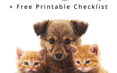 What to do with pets on moving day? Tips & free printable checklist for moving with pets