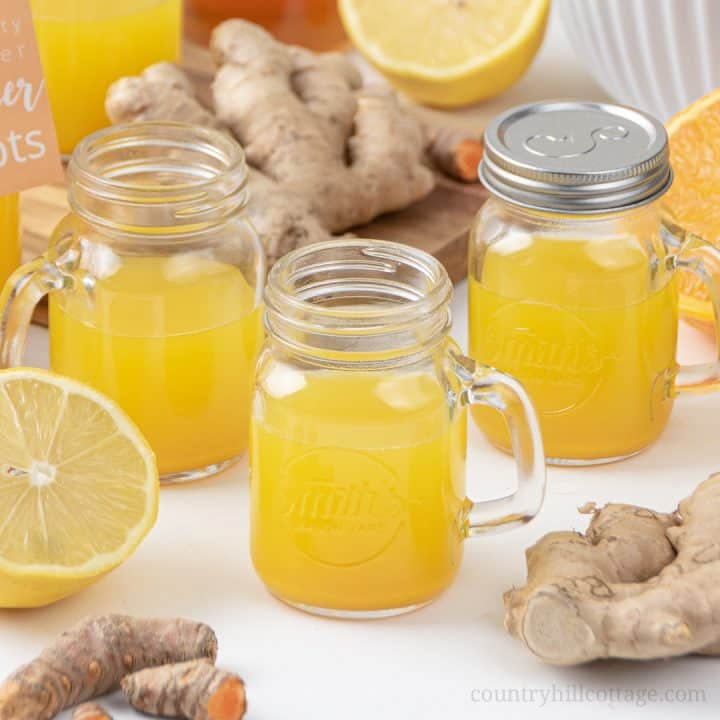 Immunity Booster Shots – Healthy Ginger Shots Recipe