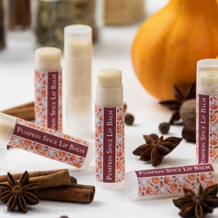 DIY Pumpkin Spice Lip Balm – Easy Homemade Lip Balm Recipe