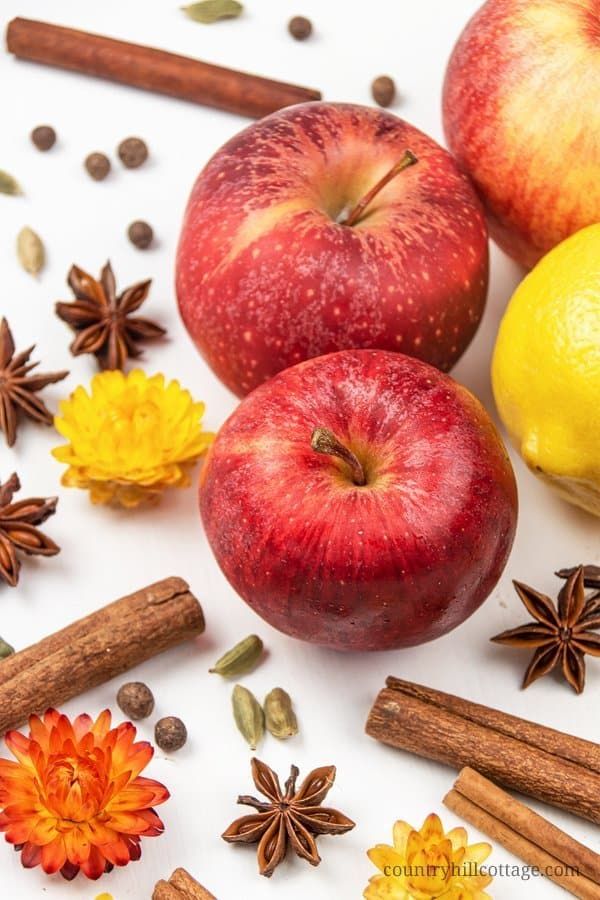 Materials for a DIY simmer pot recipe: apples, lemon and cinnamon sticks