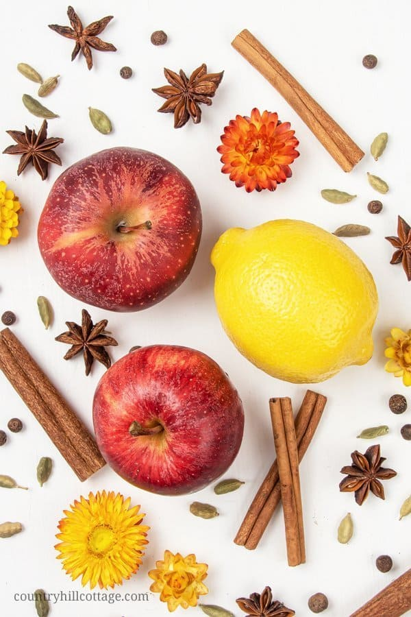 Ingredients for a homemade stovetop potpourri: apples, lemon and cinnamon sticks