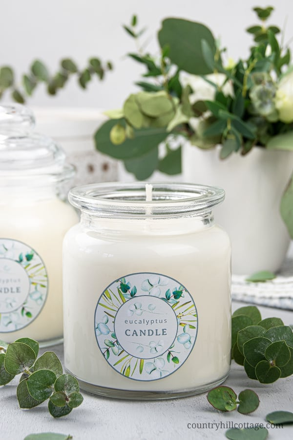 6 ounce Eucalyptus Scented Soy Candle Hand Poured Sale