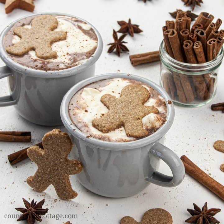 Gingerbread Hot Chocolate - Christmas Hot Chocolate Recipe