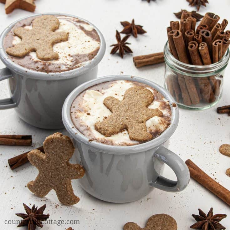 Gingerbread Hot Chocolate Christmas Hot Chocolate Recipe