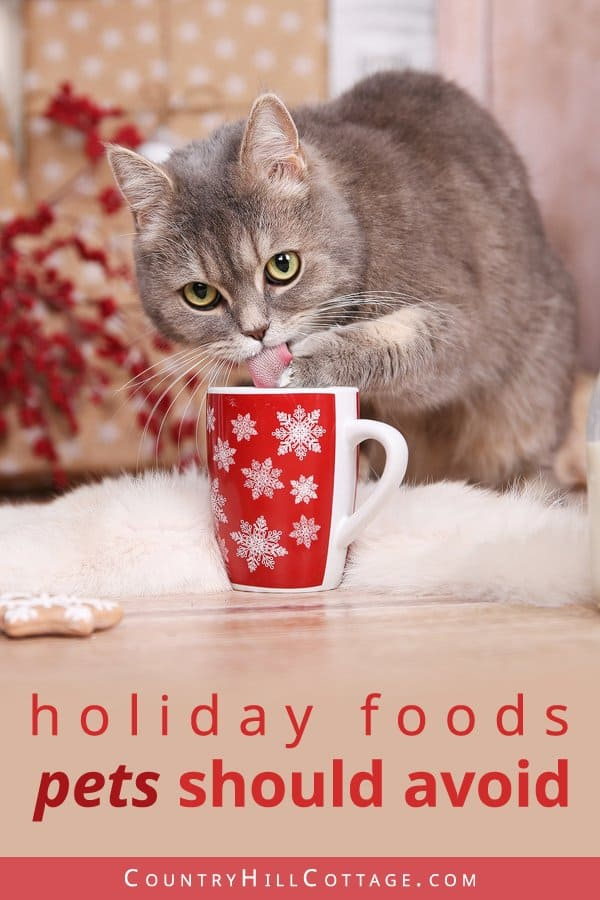 Toxic and harmful holiday food for pets - What holiday foods are dangerous for pets and should be avoided? The following foods can be harmful or even toxic for cats and dogs: Don't feed leftovers like fatty foods (gravy, meat scraps) or real bones. Alcoholic drinks and treats containing chocolate, xylitol, caffeine, macadamia nuts, grapes, or raisins can be lead to vomiting, diarrhea, stomach pain, nausea or poisoning. #pets #pethealth #petsafety #holidays #Christmas | countryhillcottage.com