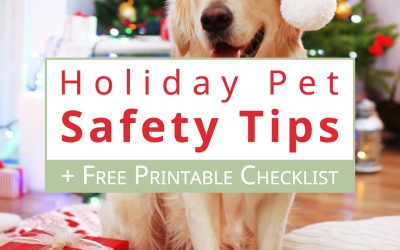 Holiday Pet Safety Tips and Free Printable Checklist