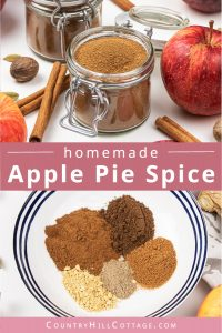 Learn how to make this easy homemade apple pie spice from scratch! The DIY spice mix can be made without cardamom and is very aromatic - perfect to season sweet and savoury apple recipes, like cookies, crescent rolls, dumpcakes, muffin or bread. Handmade seasoning is an excellent DIY food gift idea for holidays and Christmas. The recipe includes packaging ideas and free printable labels. #applepiespice #applepie #foodgift #printable #spiceblends #seasoningmix #diy | countryhillcottage.com