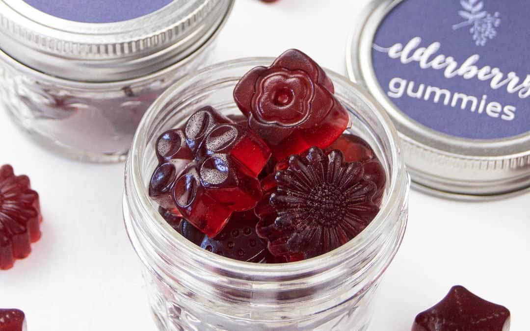 Elderberry Gummies Recipe {Healthy Fruit Snack for Kids & Toddlers}