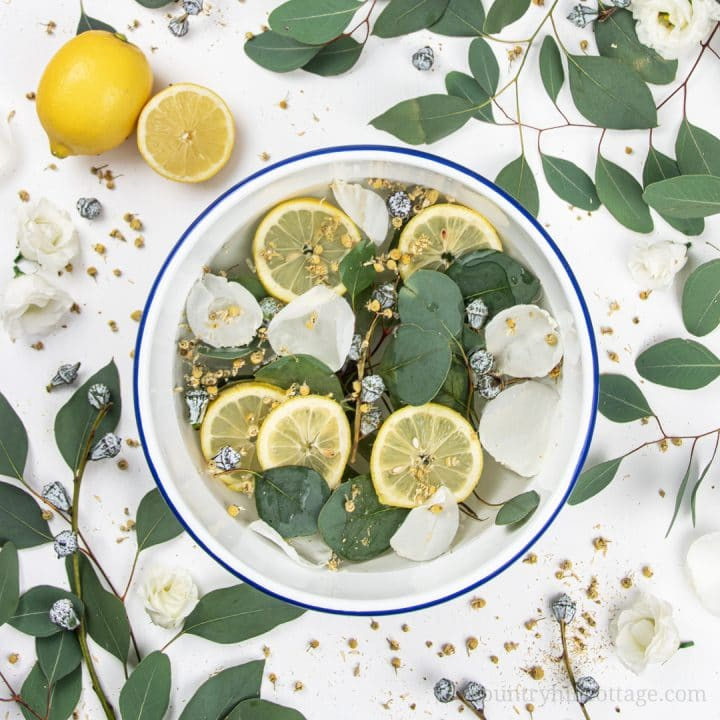 Homemade Stovetop Air Freshener Recipe with Eucalyptus and Lemon