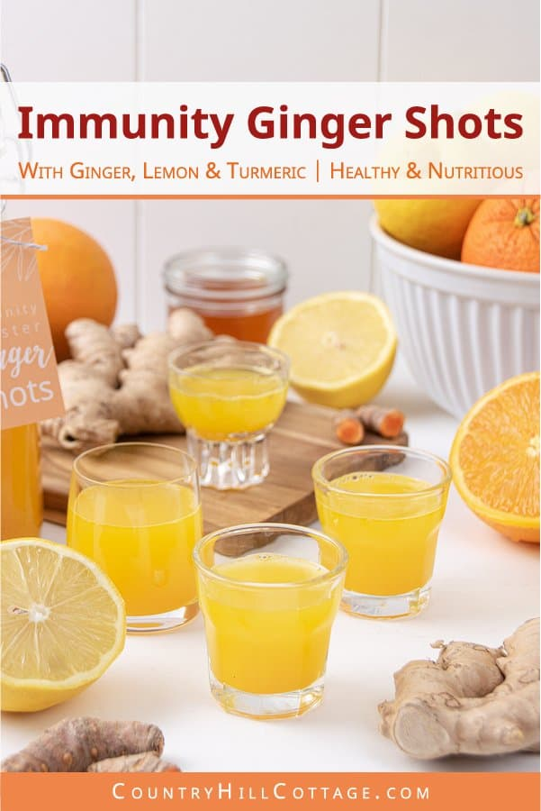 See how to make ginger shots that Selena Gomez would love! Packed with health benefits, the easy homemade immunity booster shots are good for your immune system, a cold, flu, hangover detox and weight loss! The vitamin-rich DIY juice shot recipe is made with ginger, turmeric, lemon, orange and honey to make the heathy drink kid-friendly. Can be made in a blender without juicer. Comes with labels for packaging in bottles. #gingershots #superfood #ginger #turmeric #lemon   countryhillcottage.com