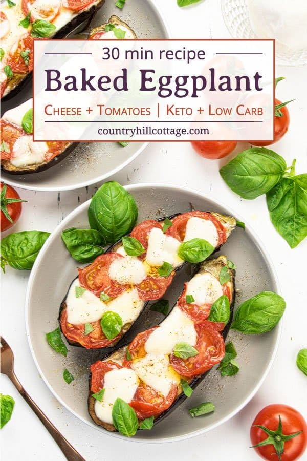 Low carb keto baked eggplants with cheese topping