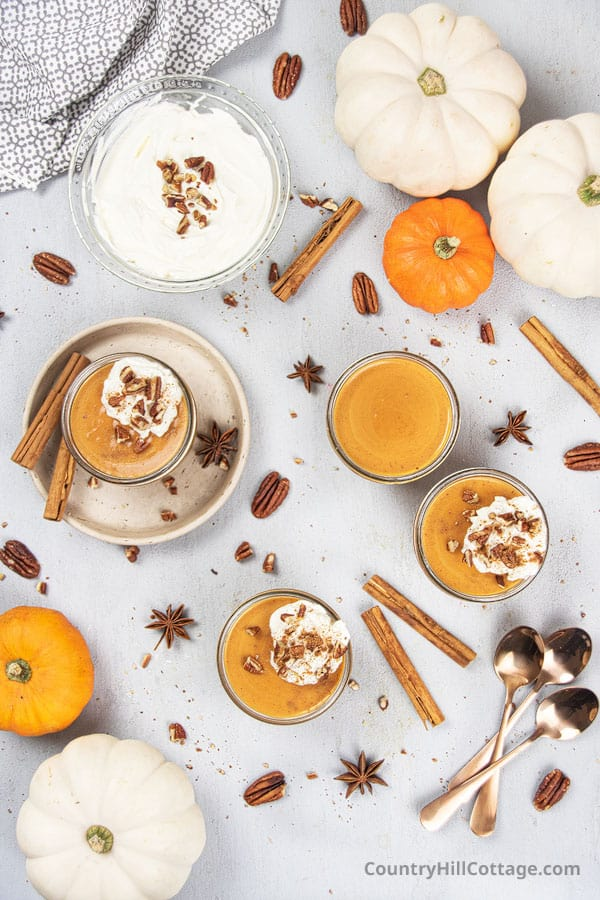 Pumpkin pudding Thanksgiving dessert