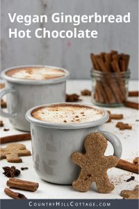 An easy Christmas hot chocolate recipe! Learn how to make gingerbread hot chocolate in just 5 minutes with 5 ingredients. This homemade hot chocolate recipe is vegan and includes options for paleo hot chocolate, keto hot chocolate, and DIY boozy spiked hot chocolate. Comes with instructions for the slow cooker and crock pot. Great for kids, tastes yum with marshmallows and coconut whipped cream toppings. #hot chocolate #hotcocoa #gingerbread #Christmashotchocolate | countryhillcottage.com