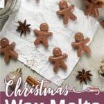 Christmas wax melts recipe