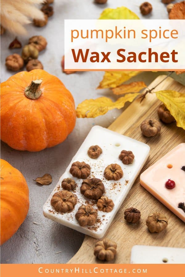 DIY Pumpkin Spice Air Freshener