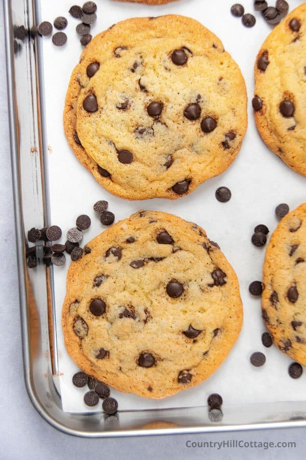 chocolate chip cookies with white sugar