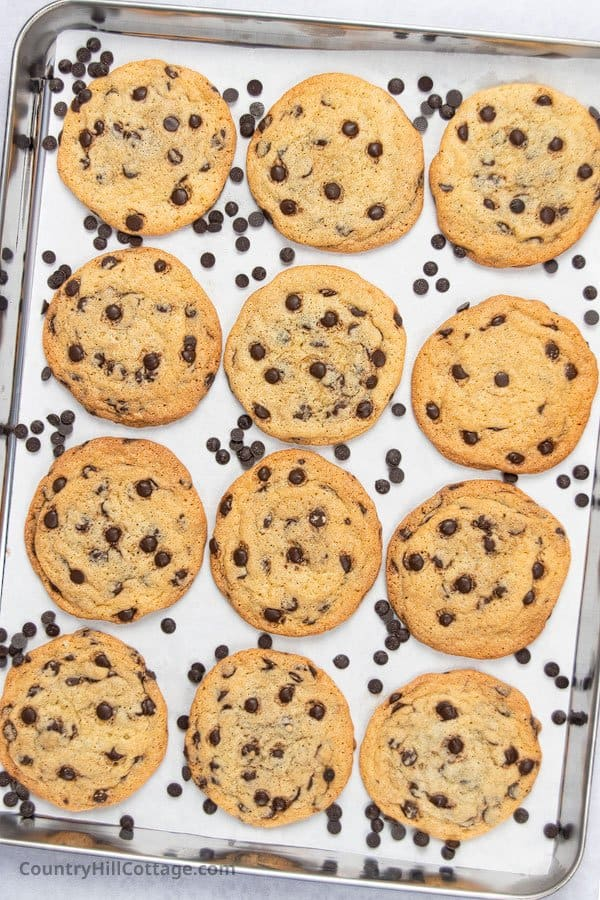 soft chocolate chip cookies without brown sugar