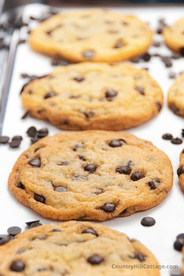chewy chocolate chip cookies without brown